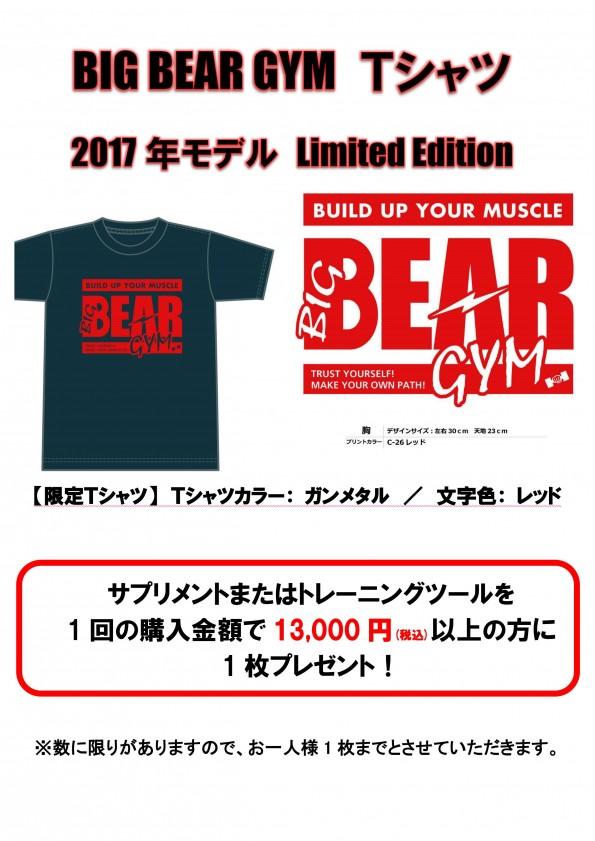 Tシャツ2017LE